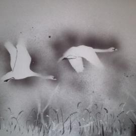 Letící labutě